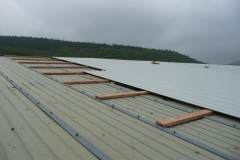 2010-05-16 Dachsanierung